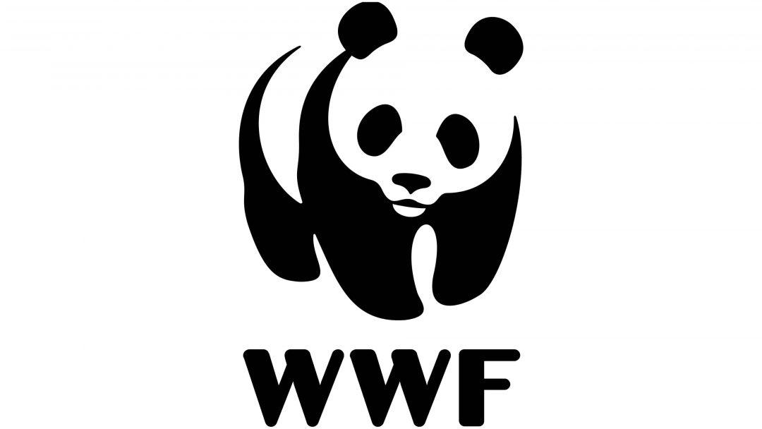WWF logo of a panda bear