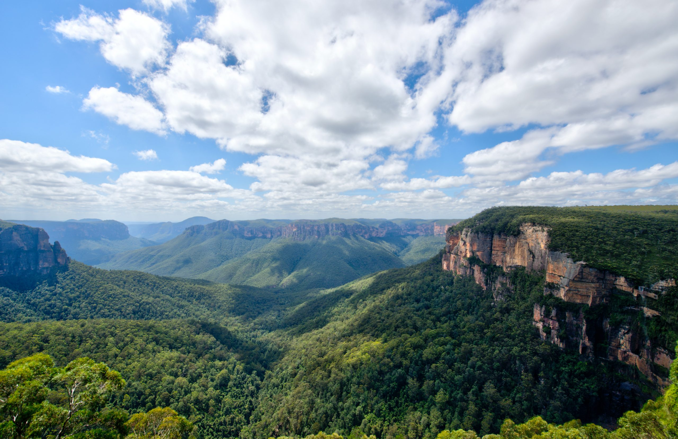 The Blue Mountains sweeping landscape